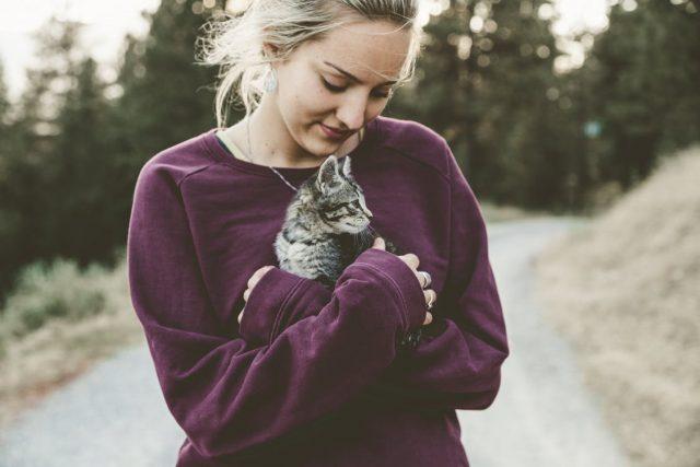 10 idées pour distraire votre chat